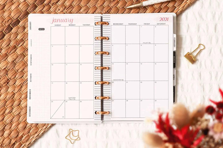 Vue mensuelle happy planner
