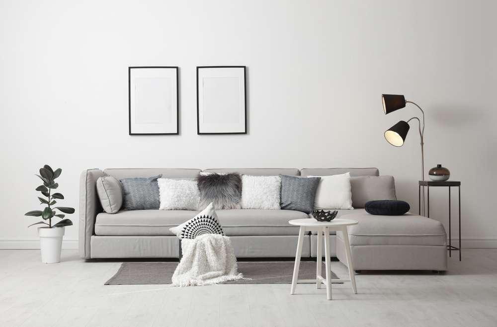 stylish and modern living room interior with comfortable sofa