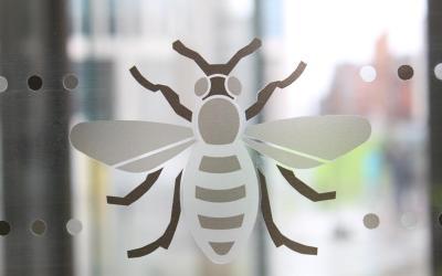 Library Walk Bees