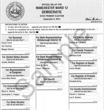 Sample primary election ballot for Ward 12.