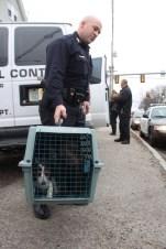 Officer Beau Bernard carries a beagle pup to the waiting animal control van.