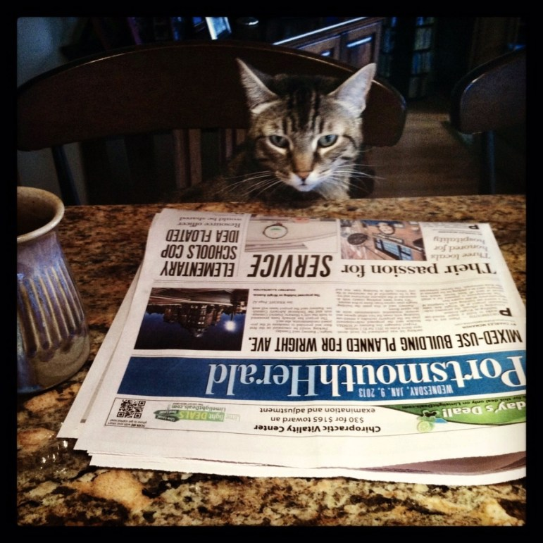 Sammy, the tabby, saw the Romney story in the paper, but the other cats were sleeping on the story.
