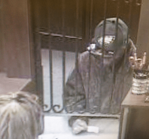 Robber with Eagles cap from surveillance footage after May 16 robbery at The Bank of New England.