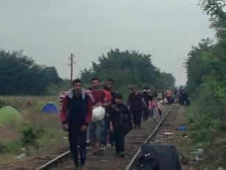 refugees walking serbia