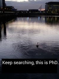 The PhD Journey