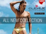 dgu new clever moda winter 2013