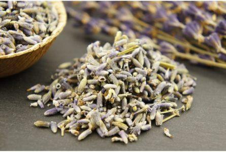 Lavendel-1148x7731