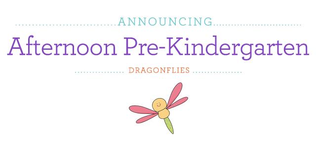 BLOG_AnnounceIMG_dragonflies