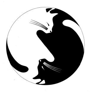 Yin and Yang Cats insta
