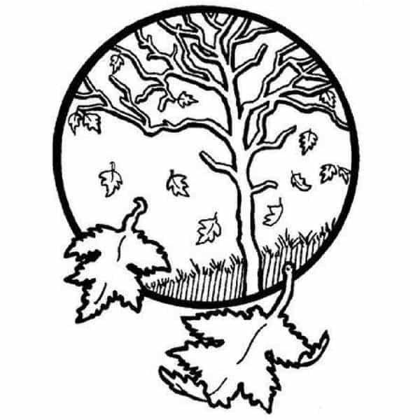 Mandalas Con árboles De La Vida Diseños Y Tatuajes Mandalas