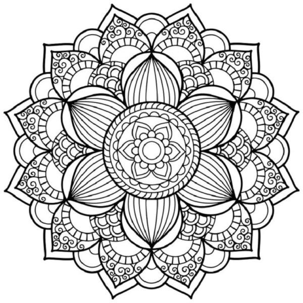 Rosas Para Dibujar