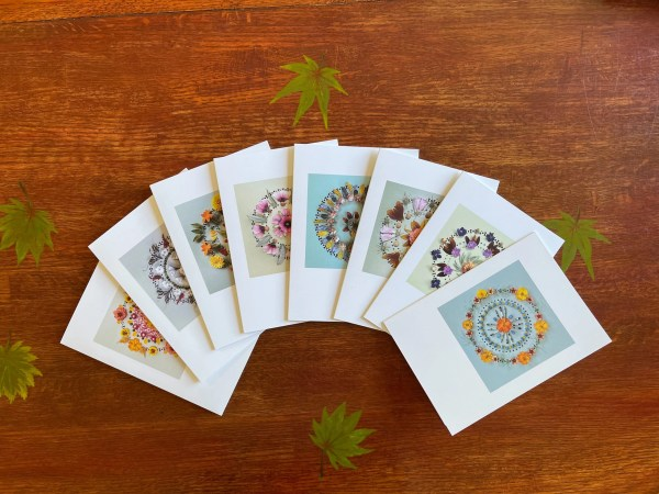 photo of 8 greeting cards