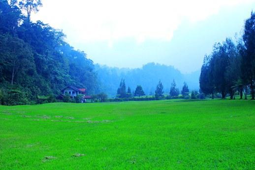 pemandangan-masuk-wilayah-golf-camp-cibodas