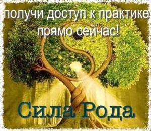 род_Fotor
