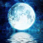 луна67900