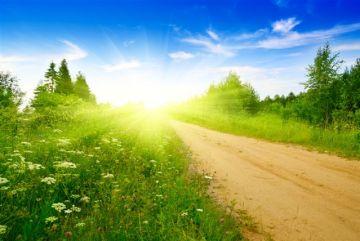 путь к мечте