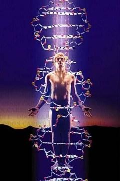 Человек и ДНК