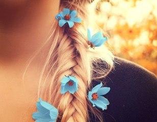волосы8
