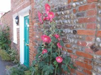 red brick flowers
