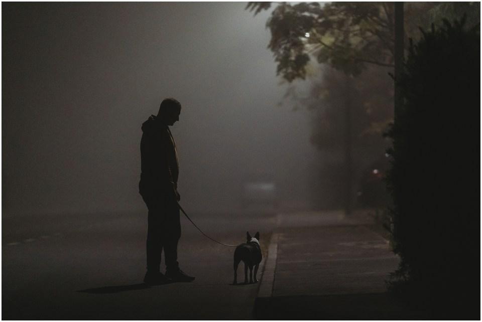 Fog-19.jpg