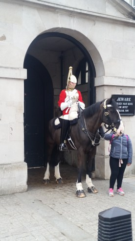 Horses of the Horse Guard