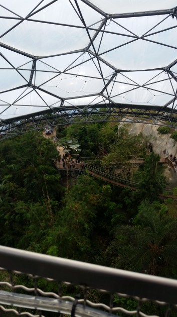 The rainforest biome had a walk above the trees. Good view but not my favourite position to be in.