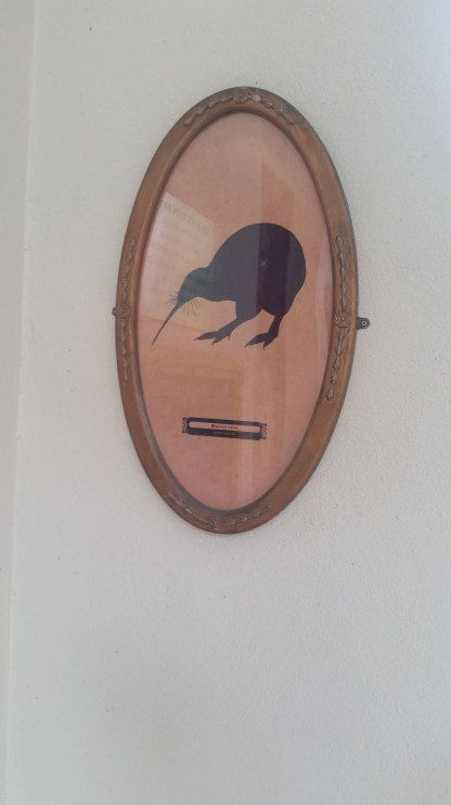 The bird house didn't have a kiwi, just this