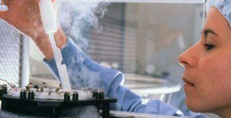 Older women exploited by IVF clinics, says fertility watchdog - The Mandatory Training Group UK -