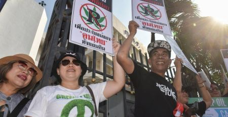 Thailand approves medicinal cannabis - MTG UK