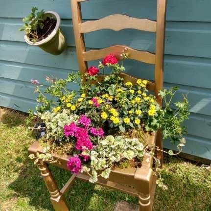 Screenshot showing a plant chair