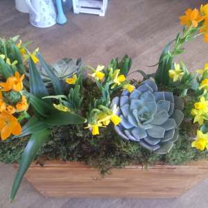 Planted coffin arrangement