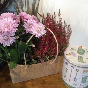 Trio of Autumn Plants & Shortbread Biscuit Tin