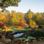 RHS gardens October events