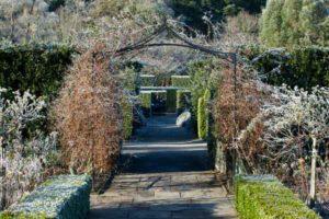 Rosemoor in winter