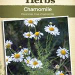 Jekka's Herbs from Johnsons
