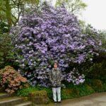 Spring at RHS Harlow Carr