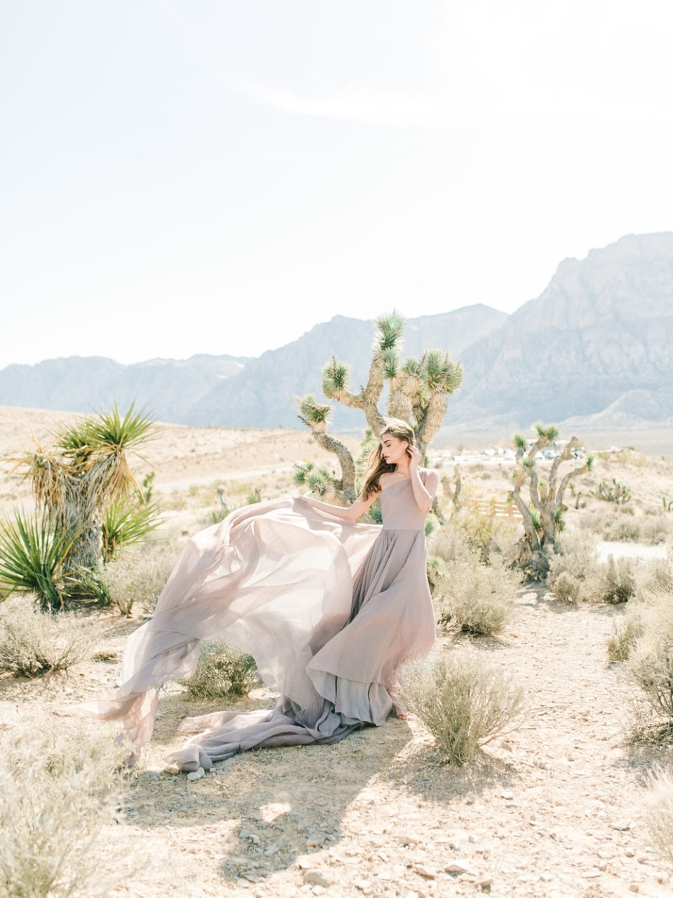 bride in desert southern california
