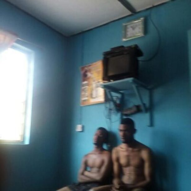 26395989_397104627394777_8272355759421915136_n Four Dog Thieves Arrested In Edo State (Pics,Video)