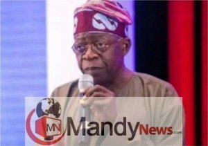 Screenshot 1 300x211 - Tinubu: Why Nigerians Should Not Elect Atiku President