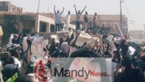 8665435_fbimg1549212798940_jpeg5fa86652807fd1af7d2ffde9638d10ed-300x169 See Massive Crowd That Welcomed Kwankwaso In Dala Local Government In Kano (Photos)