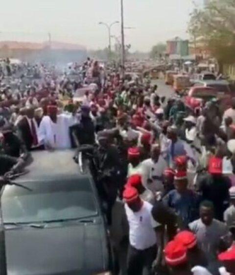 8727024_20190210155626_jpeg320de3abe282969633b9753818086670179258358 Kwankwaso Mobbed With Shouts Of 'Kwankwasiya' As He Campaigns In Kano (Photos)
