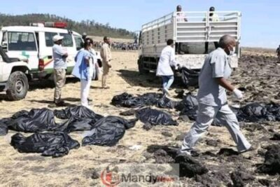 FB IMG 15522573724475762 - Crash site Of Ethiopian Airlines That Killed 157 People (Photos)
