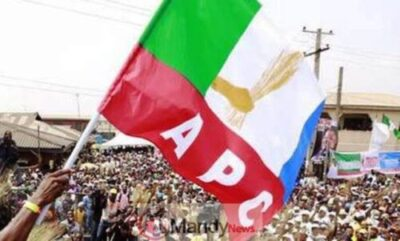 images 2 3 - Edo House Of Assembly Election: APC Wins All 24 Seats