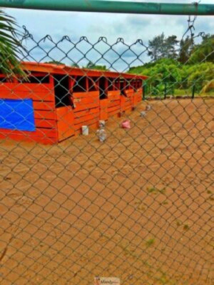 1555017632041-768x1024 Collins WeGlobe: My Visit To Tarkwa Bay Beach In Lagos, Nigeria (Photos)