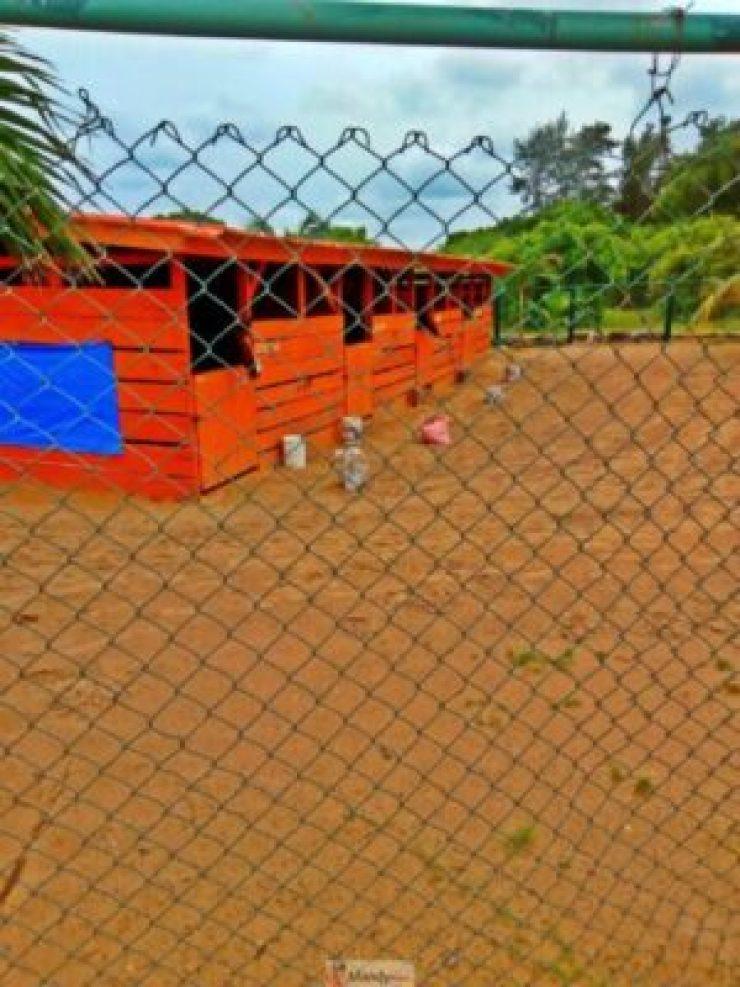 1555017677174-768x1024 Collins WeGlobe: My Visit To Tarkwa Bay Beach In Lagos, Nigeria (Photos)