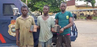 suspected phone robbers