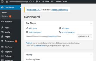 Maintaining Your WordPress Site