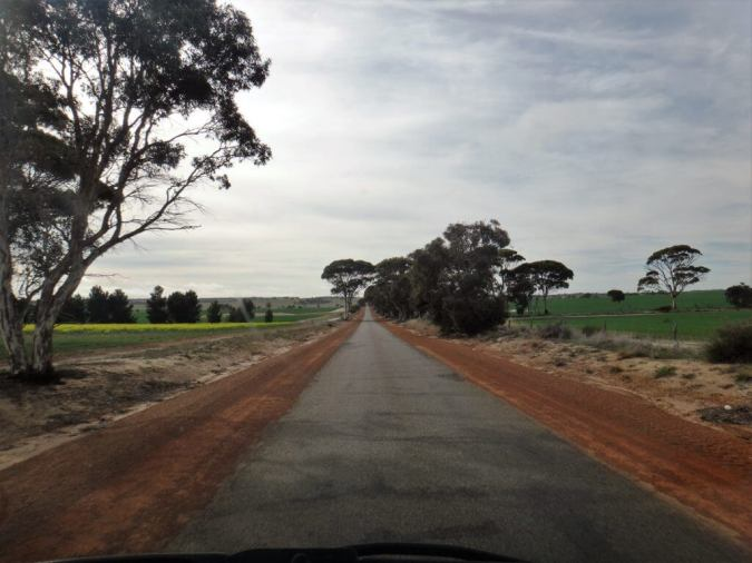 road to wave rock