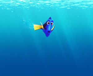 Finding Dory The Party is This Way...I Think!