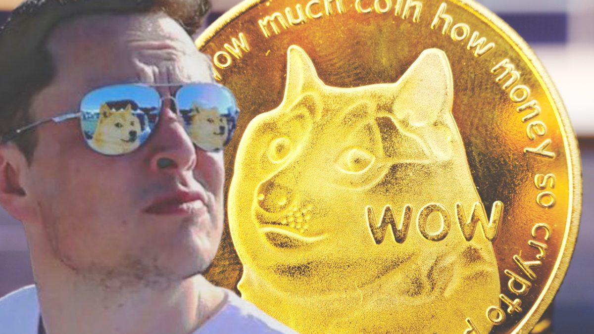 Elon Musk reafirma su apoyo a Dogecoin, cambia su imagen de perfil: los volúmenes de operaciones de DOGE aumentaron un 1,250% en el segundo trimestre – Altcoins Bitcoin News
